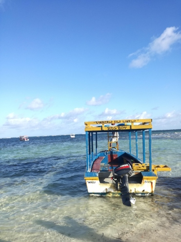 Boat for snorkeling