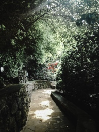 The path from the parking