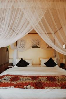 Tree tent room